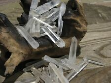 Large Raw Clear Quartz Crystal Points & Pieces x 5  - Omni New Age