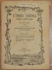 L'UMBRIA AGRICOLA 15 30 MARZO 1889 BACO DA SETA VITE GRAPE VINO UMBRIA OLIO OIL
