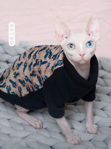 Sphynx cat kitten beige and black kitty print thick sweater with leg straps