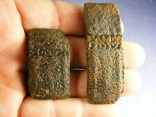 FOSSILS--TWO RARE DERMAL ARMOR FLEX SKUTES OF THE GIANT ARMADILLO!! FL. RIVER !!