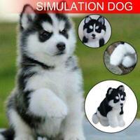 Realistic Husky Dog Simulation Toy Dog Puppy Lifelike Stuffed Toy J2N6