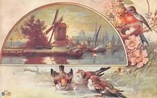 Fantasy oiseaux windmill, boats, birds nest, flowers, fleurs Souvenir