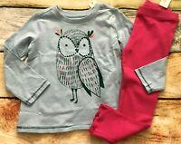 Gymboree Outfit Set 2T Creative Types Owl Top Rib Knit Leggings NWT