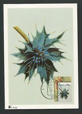 NIEDERLANDE MK FLORA DISTEL MAXIMUMKARTE CARTE MAXIMUM CARD MC CM d4452