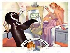 ADVERT CIGARETTE TOBACCO KOOL PENQUIN PAINTER LADY COOLNESS PRINT POSTER BB6744