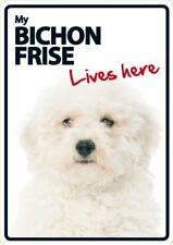 Bichon Frise Lives Here A5 Plastic Sign