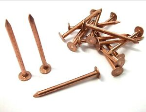 .5Kg 65/&40mm 3.3mm COPPER CLOUT ROOFING NAILS USED FOR TREE STUMP REMOVAL