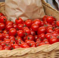 ☺100 graines de tomates cerises