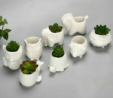 Ceramic Planter Flower Pot Bonsai Desk Table Succulent Plants Vase Glazed Decors