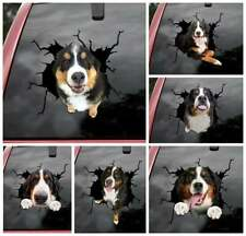 """Bernese Mountain Dog Car Window Crack Decal, Dogs Lover Car Stickers Wrap 12x12"""""""