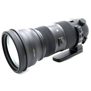 New SIGMA 150-600mm f/5-6.3 DG OS HSM Sports Lens for SIGMA SA Mount Japan Made