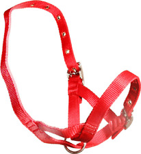 Red Nylon TetheringRearing  Halter To Suit Calves, Bucks, Rams And Deer 3344