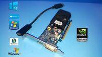 Windows 10 HP Pavilion p6230y p6232p p6234f  DVI DP HDMI HD Video Graphics Card