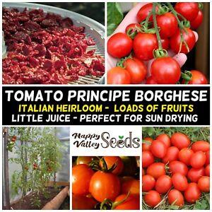TOMATO Principe Borghese 15+ Seeds HEIRLOOM vegetable garden SPRING SUMMER easy