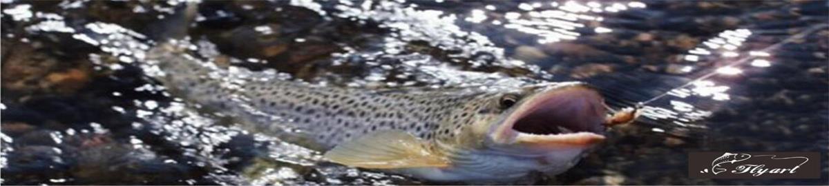 flyfishing20017