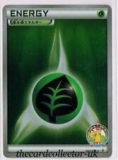 Grass Promo Pokémon Individual Cards with Holo