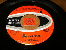 THE SHIRELLES - TONIGHT YOU'RE GONNA FALL - 20TH CENTURY - LISTEN - SOUL POPCORN