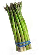 100 MARY WASHINGTON ASPARAGUS Vegetable seeds * Non GMO * ez grow * CombSH E26