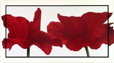 Poelstra-Holzhaus:Rouge (III) Coquelicot Modèle-cadre 112x62