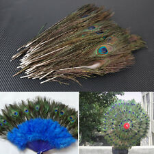 100pcs Real Natural Peacock Feathers about 8-12 Inches / 25-30cm Free Fast Ship