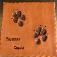 Coyote Tracks Yosemite Clay Tile Trivet Prairie Fire Pottery Made USA Decor