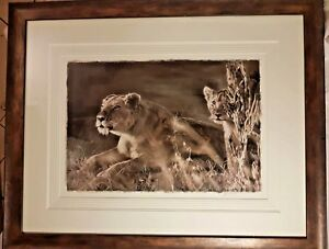 Limited Edition Rob Hefferan framed print Nature's instant