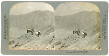 Stereo, Stereo Travel Co., Vesuvius, Italy Vintage stereo card - Tirage arge
