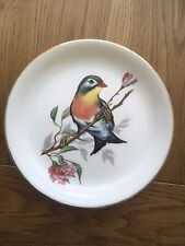 Beautiful Ceramic Plate With A Colourful Bird - Stoke On Trent Pottery.