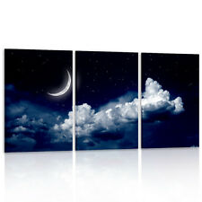 Unframed HD Canvas Print Home Decor Wall Art Picture Poster Sky Moon Night