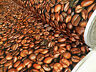 Chicchi di Caffè Fagiolo Tessuto Cotone Tenda Fodera Materiale 140cm Ampiezza