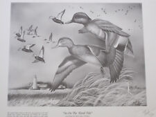 IN ON THE FLOOD TIDE BY KEITH MUELLER GREEN WING TEAL PRINT. DECOY