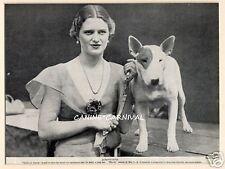 "Bull Terrier 1934 Original Vintage Art Photo Print With Actress ""Midhurst Rhoda"""