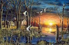 """Jim Hansel Autumn Visitors Ducks Mallard Print  12"""" x 7.75"""""""