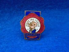 1915-1962 DAILY MAIL TEDDY TAIL LEAGUE ENAMEL LAPEL PIN BADGE, RODEN LONDON
