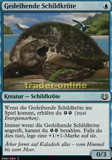 4x Gedeihende Schildkröte (Thriving Turtle) Kaladesh Magic