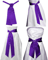 Royal PURPLE In Raso Matrimonio Fancy Dress Party Nastro Fascia FOULARD DA COLLO ascot
