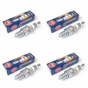Genuine NGK 3981 Iridium Spark Plugs Pack of 4 Derbi Predator 50 AC 2000