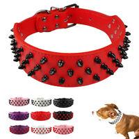 Hundehalsband Halsband Nietenhalsband breit Nieten Hunde Leder Pitbull Mastiff