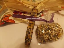 20 Glass Gem Corn Seeds Historical Native American Organic Garden Angel Seeds