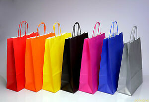 Coloured Paper Bag Twist Handle Party Gift Carrier / Bags With Handles - Medium