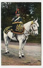 DRUM MAJOR, MOUNTED BAND ROYAL ARTILLERY: Military postcard (C14830)
