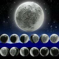 Moon Lamp Wall Lunar LED Light Indoor 6 Kinds Phase Remote Control Night Plastic