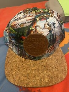 picture snowboard Snapback