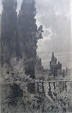 stampa antica CASTELLI ROMANI CAMPAGNA ROMANA TIVOLI VILLA ADRIANA BRIOSCHI 1904