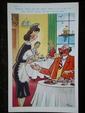 POSTCARD COMIC WAITRESS - THERE IS A FLY IN MY SOUP WHAT DOES THIS MEAN - NO IDE