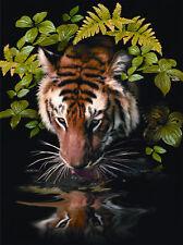 Malen nach Zahlen PJS57 Durstiger Tiger