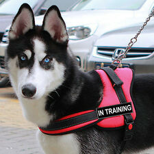 Nylon Service Dog Vest Removable label Patches In Training THERAPY DOG POLICE