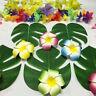 24PCS/set Tropical Hawaiian Green Leaves Luau Moana Party Table Decorations