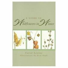A Guide to Wildflowers in Winter: Herbaceous Plants of Northeastern North Americ