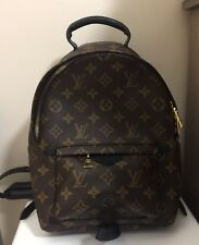 Louis Vuitton Palm Springs Mochila PM M41560
